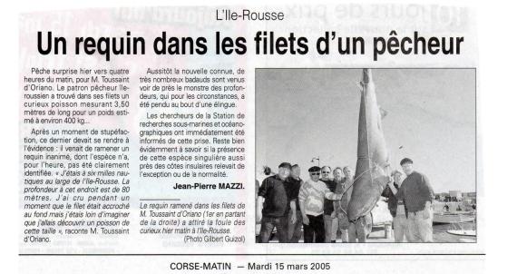 corse_matin_requin_ile_rousse