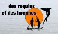 Des requins et des hommes